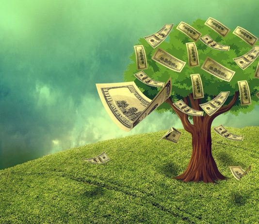law of attraction Home cash 1169650 1920 forest 534x462